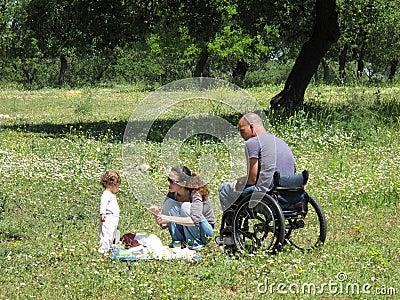 Comida campestre del sillón de ruedas