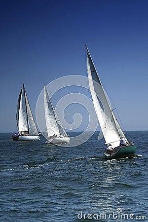Comienzo de un regatta de la navegación