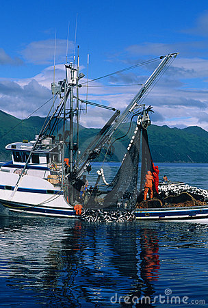 Commercial Salmon Fishing Royalty Free Stock Images - Image: 12749079
