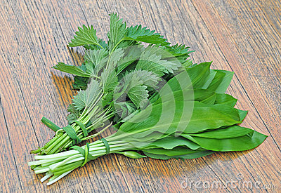 Common nettle and wild garlic Stock Photo