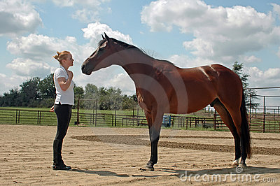 Communicating with Horse