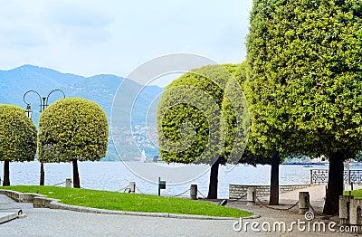 Como lake, trees on lakeside. Italy, Europe.