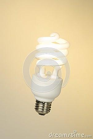 Compact fluorescent-09