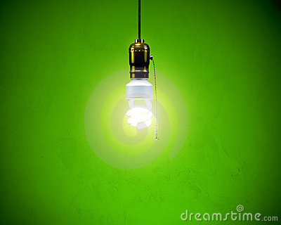 Compact Fluorescent Bulb - Hanging