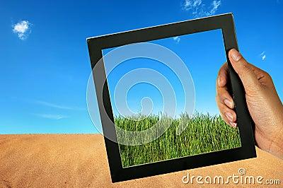 Compare desert and green grass