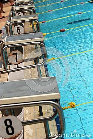 Competição da natação