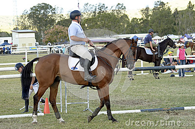 Competitive show horse and rider Queensland country Australia Editorial Stock Photo