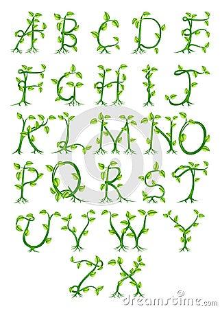 Plant Alphabet Letters Stock Image Image 30013081