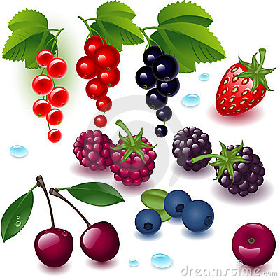 Complete set berry
