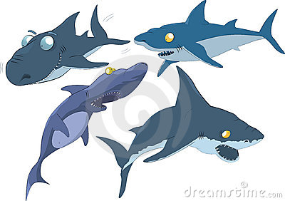 The complete set of sharks