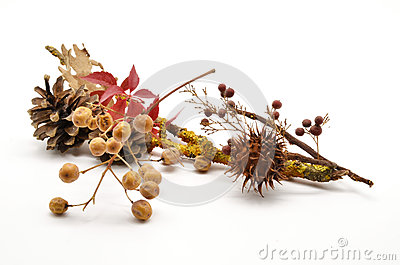 Composition of autumn leaves and fruits