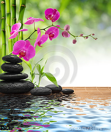Free Composition Bamboo-purple Orchid-black Stones Royalty Free Stock Photos - 32938528