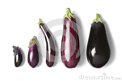 Composition of eggplants