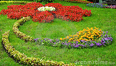 Composition of flowers on grass