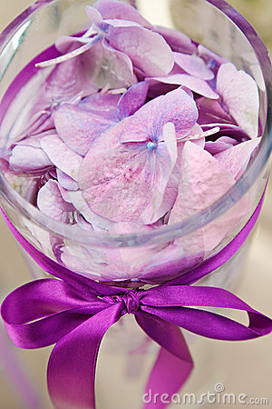 Composition with orchid petals in glass vase