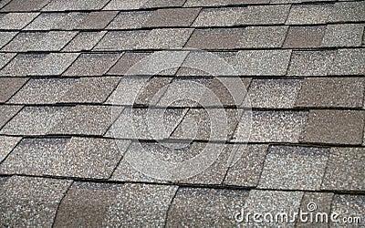 Composition Shingle Roof