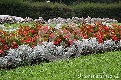 Composizione nel giardino fotografie stock libere da - Composizione giardino ...