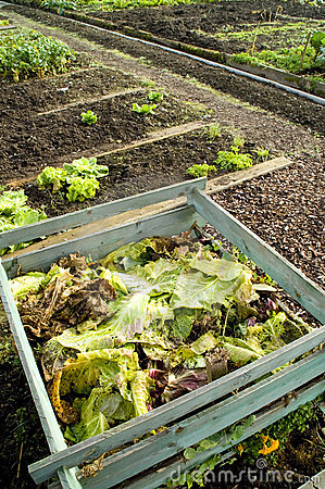 Free Composting Stock Images - 1398254