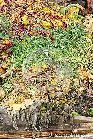 Composting Heap