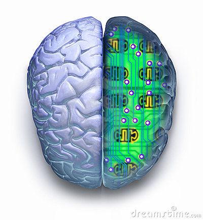 Free Computer Brain Circuit Technology Stock Photo - 3579470