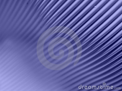 Computer Cable Background 3