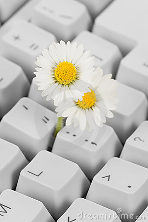 Computer Keyboard and flower