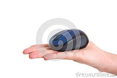Computer mice on hand