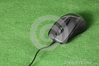 Computer mouse on grass background