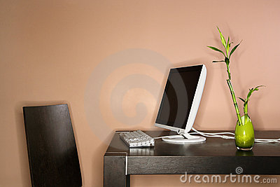 Computer on Table with Bamboo Plant