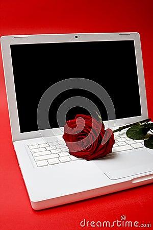 Computer und Rot stiegen