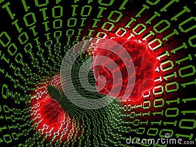 computer virus 2 thumb19140552 Remoción de Virus y Malware
