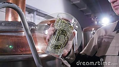 Conceito de cervejaria Ingrediente para cerveja Grânulos de lúpulo perfumantes Vidro cheio de pellets de lúpulo vídeos de arquivo