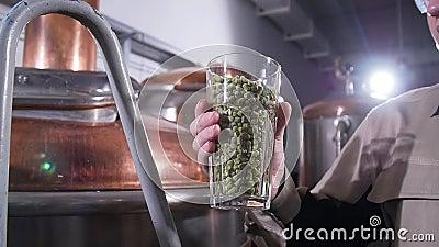 Conceito de cervejaria Ingrediente para cerveja Grânulos de lúpulo perfumantes Vidro cheio de pellets de lúpulo filme