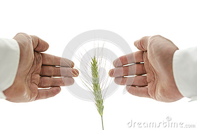 Concept of alternative healing