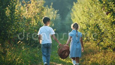 Little girl and her brother carry basket along beautiful nature. Rear view. Slowmo. Slow motion. Copy space. 4K. Concept happy childhood. The girl and little stock footage