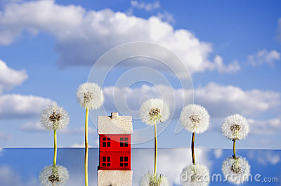 Concept with house symbol on mirror and dandelion