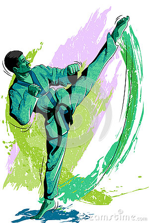 Free Concept Of Sportsman Doing Martial Arts Royalty Free Stock Images - 73688379