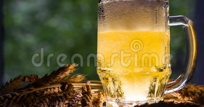 Concept of the Production of Beer. Softly glowing mug of beer surrounded by ears of ripe wheat. Slow Motion 120 fps