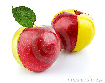 Concept of red and yellow apple fruit with green