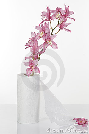 Concept still life with toilet paper and orchid