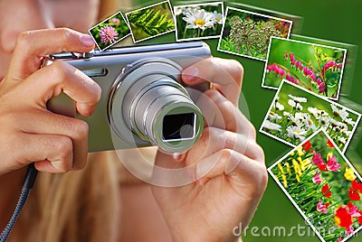 Concept of taking nature photos  by digital camera