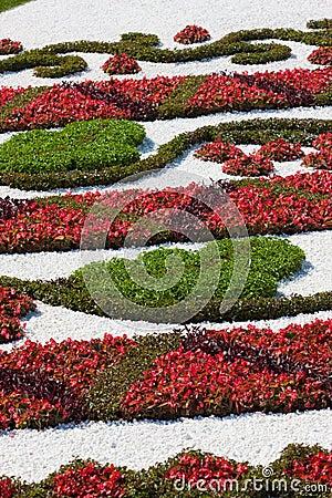 Série de nature : texture extérieure de conception de fleur fraîche
