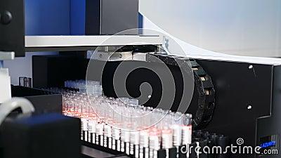 Concepto de salud Equipo médico profesional que realiza análisis de sangre humana, Racks para colocar muestras y tubos de sangre almacen de metraje de vídeo
