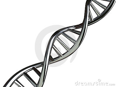 Conceptual Illustration of DNA