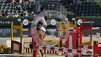Concorrenza di salto internazionale dei recinti del cavallo video d archivio