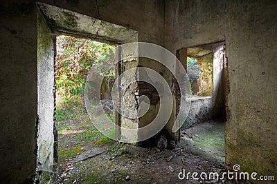 Concrete Decay 01