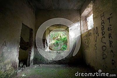 Concrete Decay 02