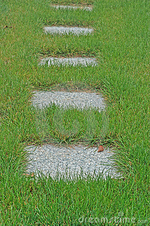 Concrete Pavers in Tall Grass