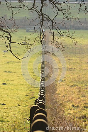 Concrete pole fence in the grass