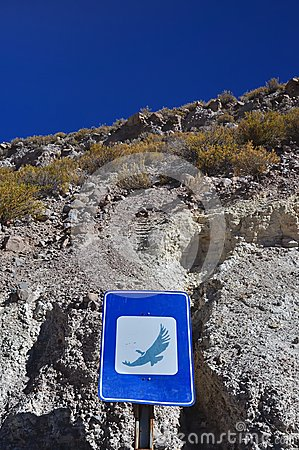 Condor sign in the atacama